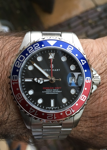 Steinhart 39mm GMT red blue